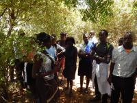 55 studenter besökte Better Globes plantage i Kibwezi tillsammans med sin föreläsare Dr David Musyimi.