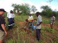 Better Globes trädexpert Jan Vandenabeele övervakar träningen av nya konsulter som ska hjälpa bönderna att plantera träden på bästa sätt.