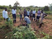Better Globes konsulter som åker runt i Kenya och hjälper bönder att plantera Mukau-träd
