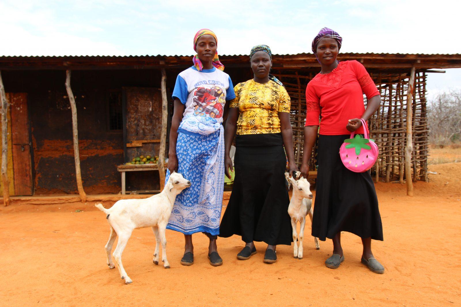 Mwethi Mwendi till vänster hade lånat 100 USD för att köpa getter. Tack vare getterna kan nu försörja hela sin familj och skicka sina barn till skolan.