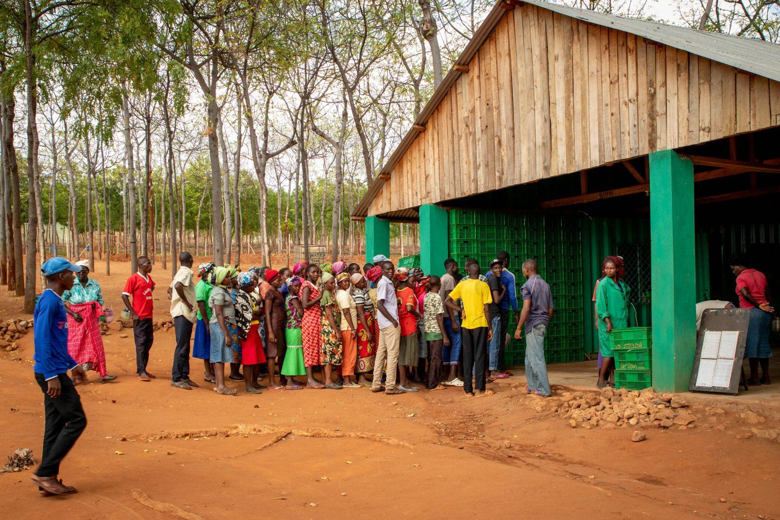 Dagsarbetarna väntar på att checka ut med hjälp av sina fingeravtryck efter en dags arbete på Kiambere-plantagen. Bild från juni 2019.