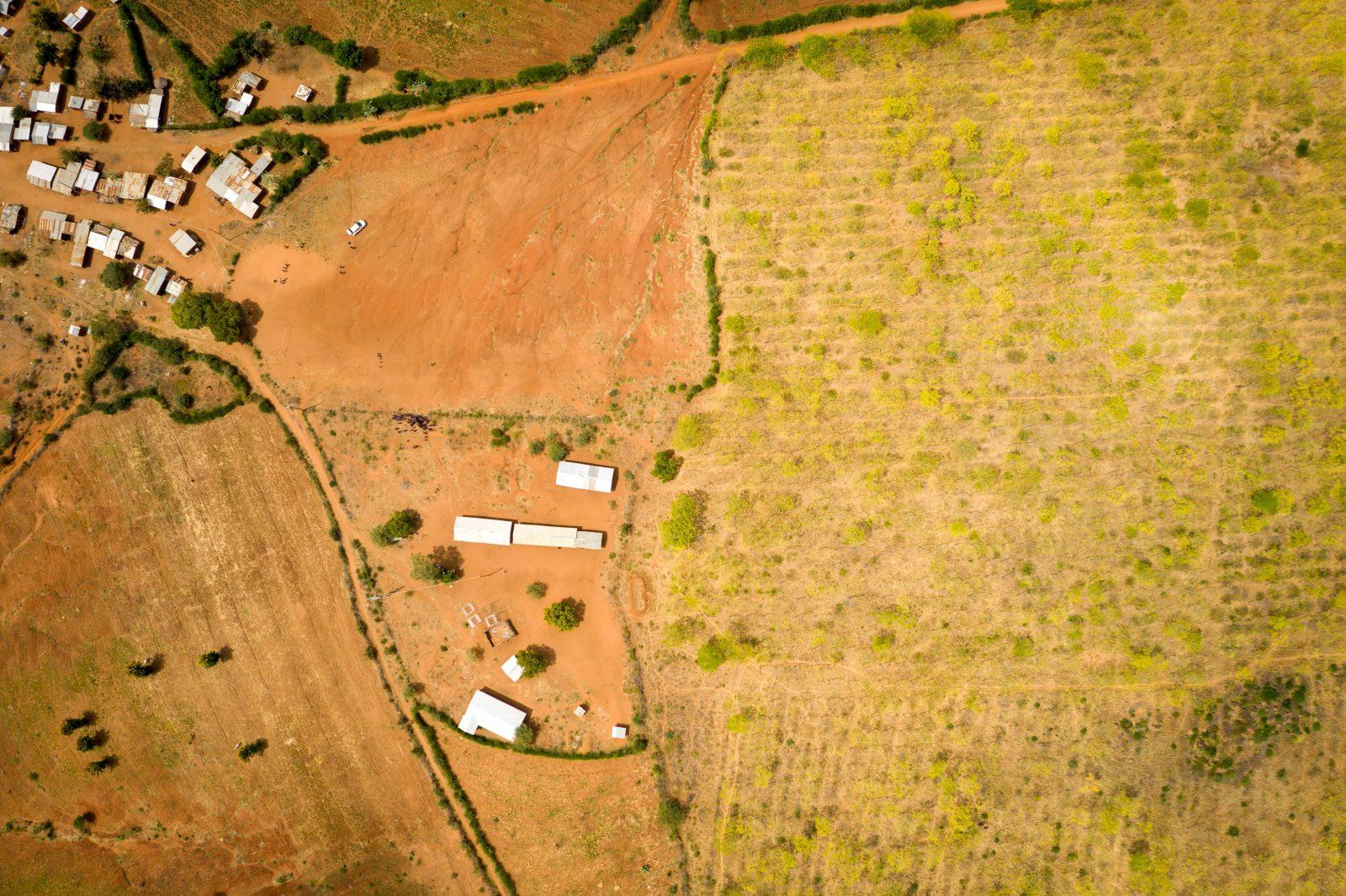 Drönarbild som visar den torra semi-öknen i Kiambere med skolan och byn till vänster och plantagen i höger. På de 10 år som Better Globe varit aktiva i området har invånarantalet mångdubblats tack vare  nya arbetstillfällen.
