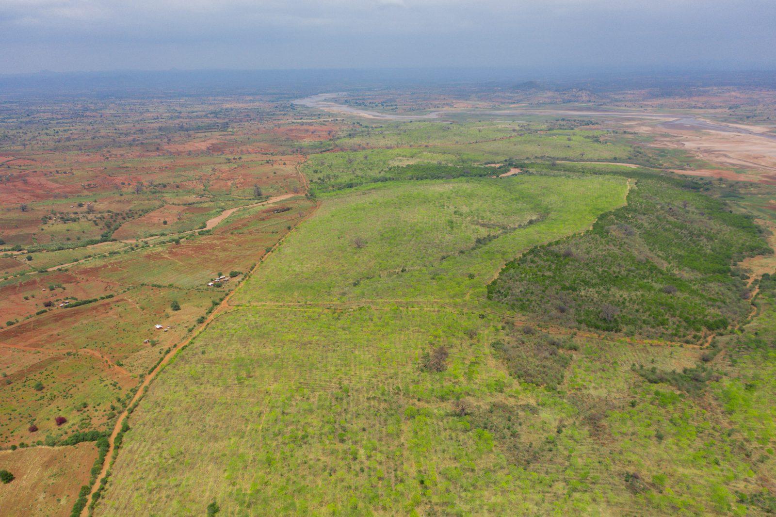 Drönarbild över Kiambere-plantagen från ca 270 meters höjd, juni 2019
