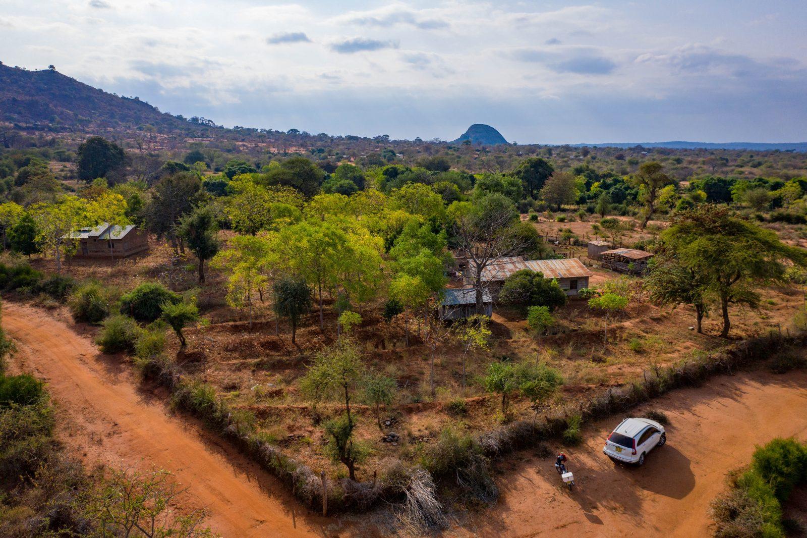 Drönarbild över partner-bonden Sospeter Musioki Mutisoki gård i Mwingi-området i Kenya. Bild från juni 2019.